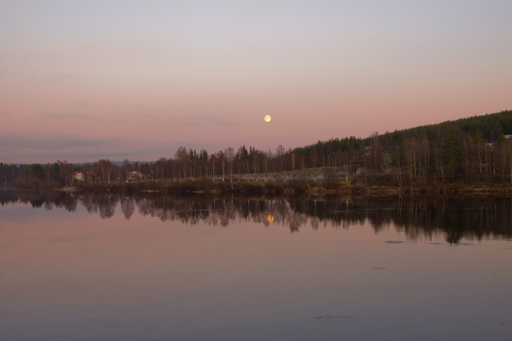 The moon above the river